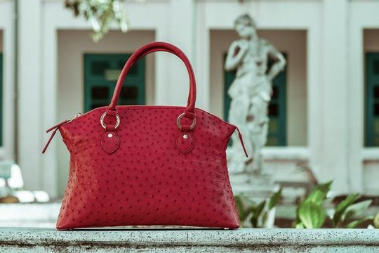 Độc đáo thời trang công sở với túi xách da đà điểu, cá sấu Khatoco - Ảnh 2.