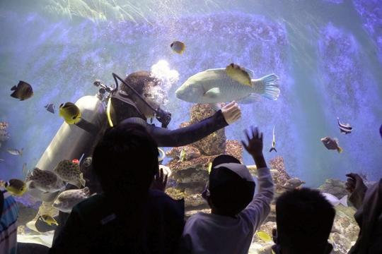 10 điểm hút khách của Nha Trang - Ảnh 2.