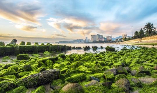 10 điểm hút khách của Nha Trang - Ảnh 8.