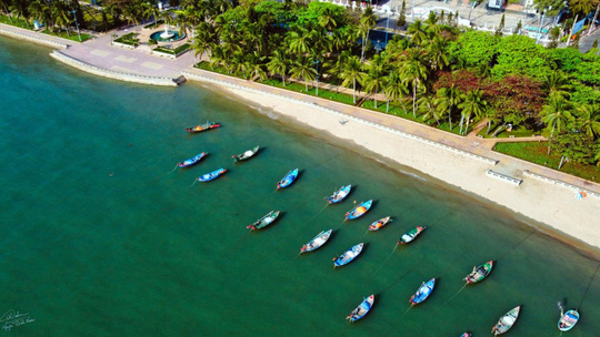 Hơn 100 gian hàng tại Tuần lễ món ngon phố biển Vũng Tàu 2021 - Ảnh 2.