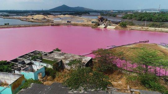 Vụ đầm nước chuyển màu hồng tím ở Bà Rịa - Vũng Tàu: Đề xuất nghiên cứu sâu để khai thác du lịch - Ảnh 2.