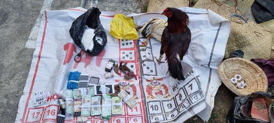 CLIP: Cảnh sát hình sự phá trường gà hoạt động tinh vi ở Kiên Giang - Ảnh 3.