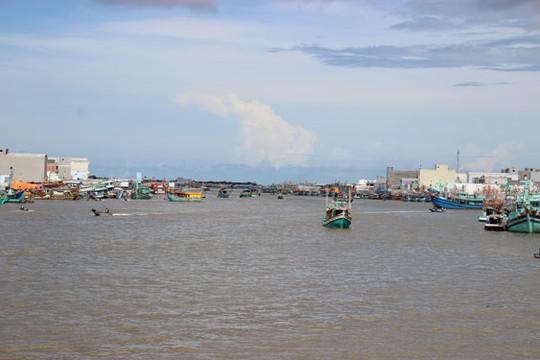 Đại lý không được thu mua hải sản khai thác bất hợp pháp - Ảnh 1.