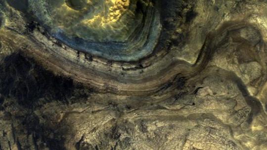 Dấu hiệu lạ: sinh vật ngoài hành tinh y hệt loài cổ quái nhất Trái Đất? - Ảnh 1.