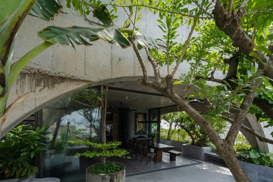 Nhà 6 tầng ngập cây xanh, yên bình giữa không gian phố chợ - Ảnh 5.