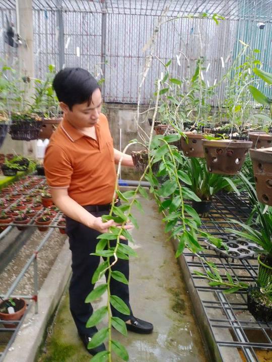 Ông chủ vườn lan 7X Mạnh Hùng chia sẻ kinh nghiệm trồng hoa lan - Ảnh 2.
