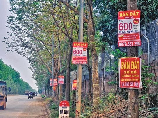 Nhà đầu tư nước ngoài nghĩ gì về sốt đất ở Việt Nam? - Ảnh 1.