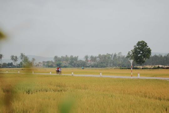 Phú Yên không chỉ có hoa vàng trên cỏ xanh - Ảnh 21.