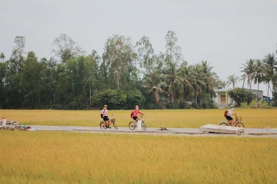 Phú Yên không chỉ có hoa vàng trên cỏ xanh - Ảnh 22.