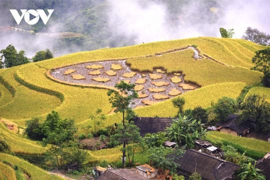 Ngắm Hoàng Su Phì đẹp tựa tiên cảnh khi bước vào mùa vàng - Ảnh 11.
