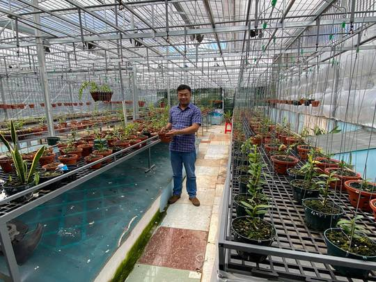 Ông chủ vườn lan Phạm Đình Đô chia sẻ về giá trị lan đột biến - Ảnh 7.