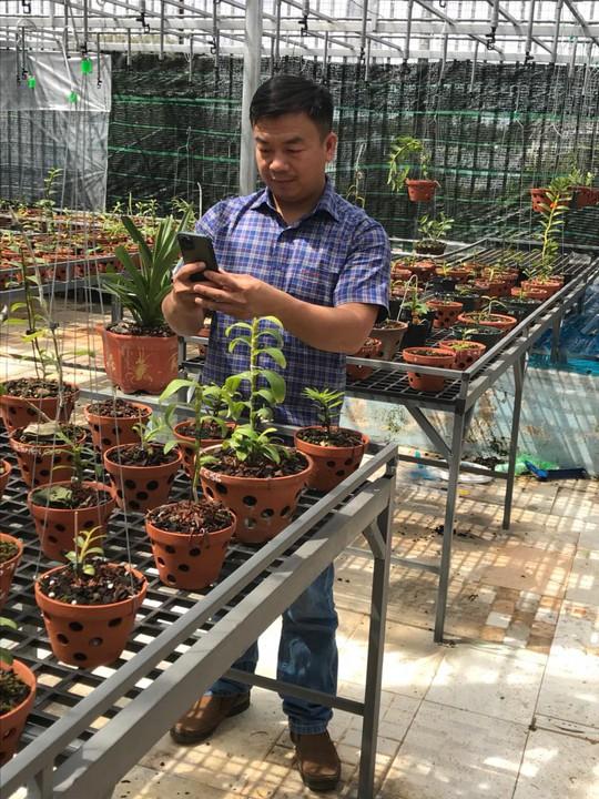 Ông chủ vườn lan Phạm Đình Đô chia sẻ về giá trị lan đột biến - Ảnh 8.