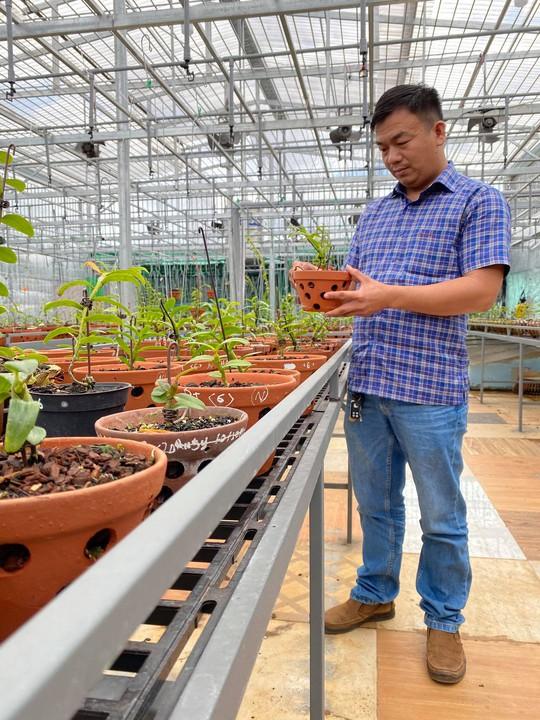 Ông chủ vườn lan Phạm Đình Đô chia sẻ về giá trị lan đột biến - Ảnh 3.