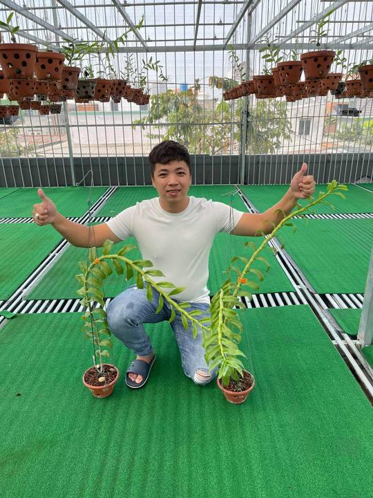 Ông chủ vườn lan Huỳnh Vũ: Từ chàng trai trông xe đến gia tài hoa lan giá trị - Ảnh 5.