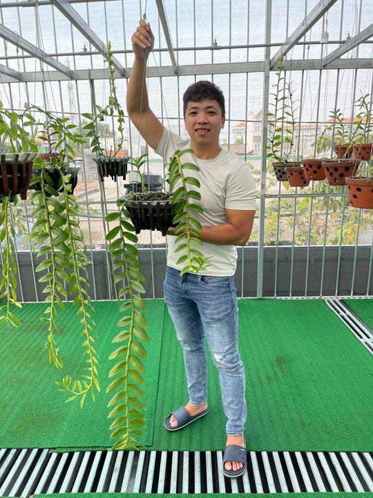 Ông chủ vườn lan Huỳnh Vũ: Từ chàng trai trông xe đến gia tài hoa lan giá trị - Ảnh 2.