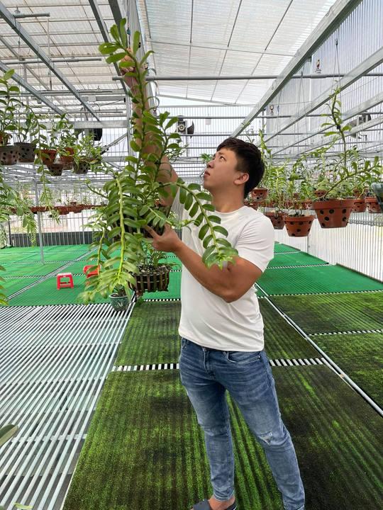 Ông chủ vườn lan Huỳnh Vũ: Từ chàng trai trông xe đến gia tài hoa lan giá trị - Ảnh 4.
