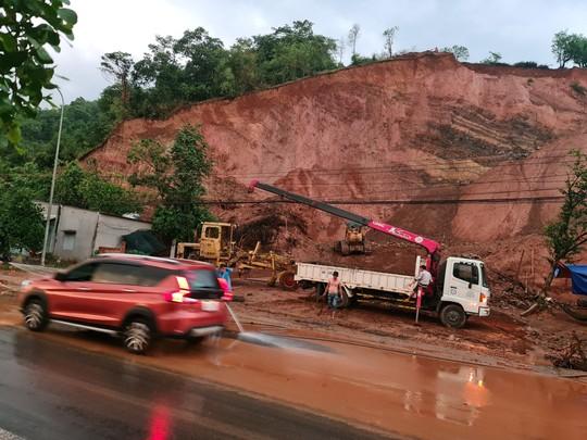 Sở, huyện cầu cứu, chờ UBND tỉnh Đồng Nai chỉ đạo xử lý vụ lộ hàng loạt vi phạm quả đồi khủng - Ảnh 3.