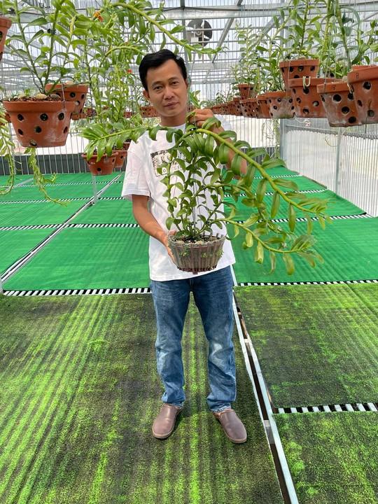 Ông chủ vườn lan Phạm Minh Minh nổi tiếng, được yêu mến đến không ngờ - Ảnh 1.