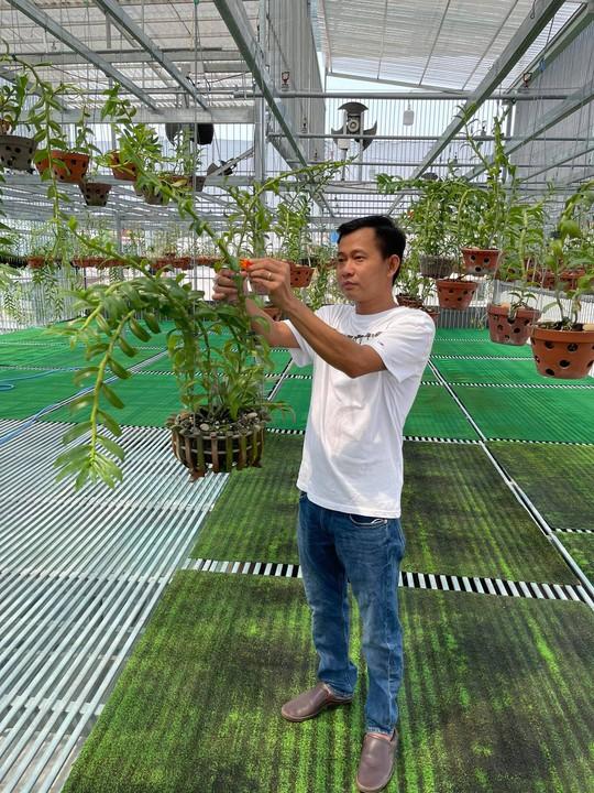 Ông chủ vườn lan Phạm Minh Minh nổi tiếng, được yêu mến đến không ngờ - Ảnh 3.