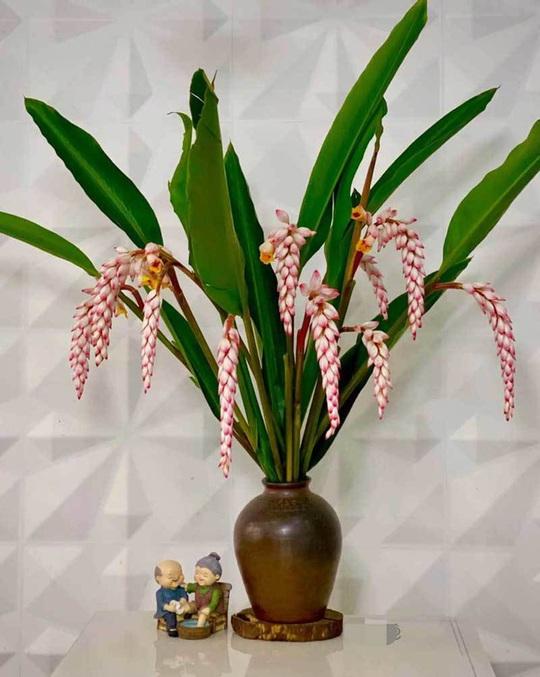 Hoa dại bờ bụi siêu đắt đỏ, mối buôn bán 2.000 cành/ngày - Ảnh 4.