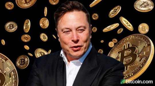 Tin lời người nổi tiếng, nhà đầu tư ngậm quả đắng - Ảnh 1.