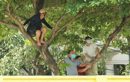 CLIP: Cổ động viên Hoà Bình leo cây xem trận khai mạc giải Hạng nhì Quốc gia 2021 - Ảnh 2.