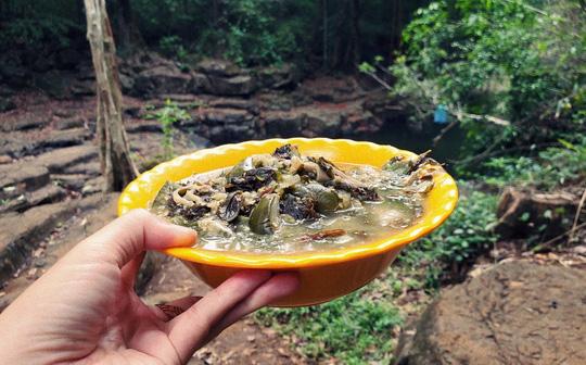 Khám phá vẻ đẹp siêu thực ở khu rừng cổ tích Bù Gia Mập - Ảnh 11.