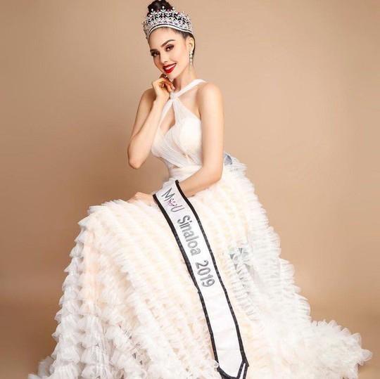 Bổ nhiệm Hoa hậu Hoàn vũ Mexico 2021 - Ảnh 4.