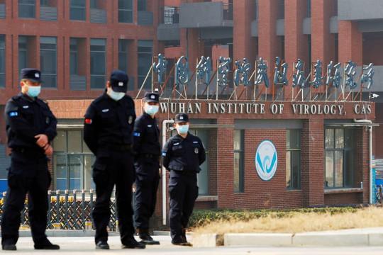 Nguồn gốc Covid-19: Thêm chi tiết mâu thuẫn về Viện Virus học Vũ Hán - Ảnh 1.