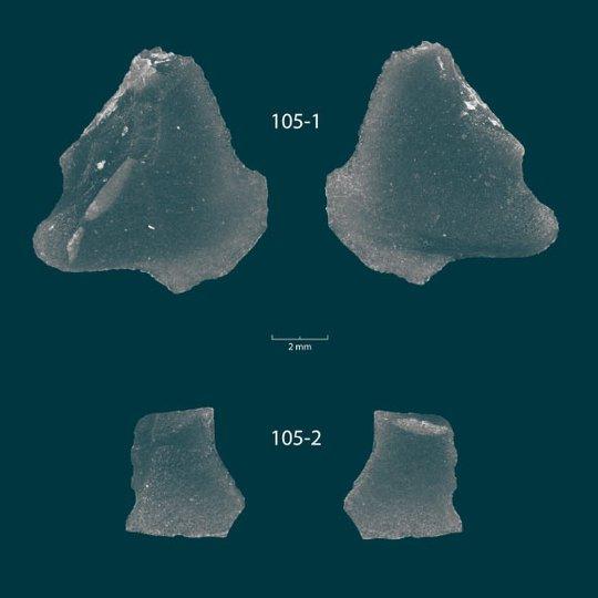Kho báu hắc diện thạch 9.000 năm gây sốc xuất hiện dưới đáy hồ - Ảnh 2.