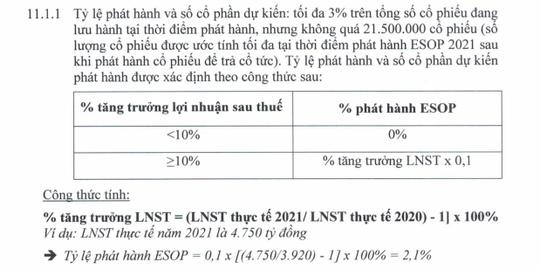 Thưởng đậm bằng cổ phiếu ESOP: Ai hưởng lợi nhất? - Ảnh 1.