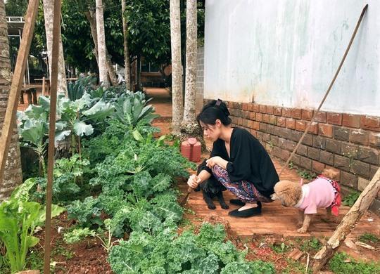 Gia đình một năm xuyên Việt trên ngôi nhà di động - Ảnh 2.