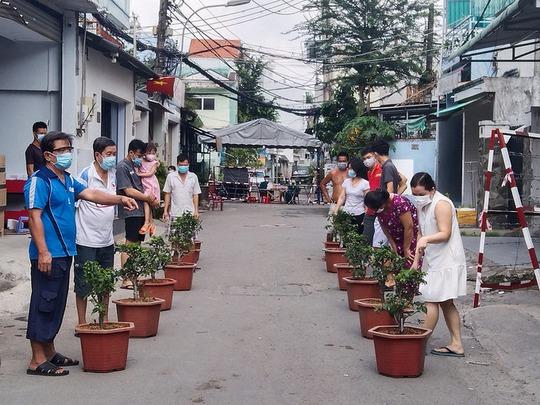 Cuộc thi chăm sóc cây trong xóm cách ly - Ảnh 1.