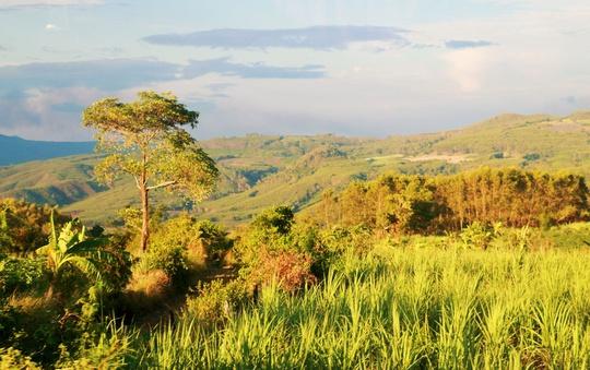Thức dậy ở miền nắng đẹp Phú Yên - Ảnh 11.
