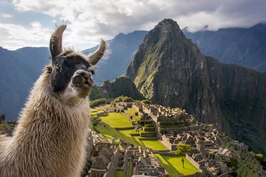Mở cửa đường mòn dẫn đến thành phố bị mất của người Inca - Ảnh 1.