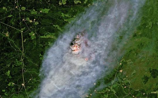 Bão lửa ở Canada gây ra 710.117 tia sét trong 15 giờ - Ảnh 1.