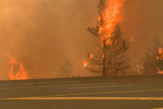Bão lửa ở Canada gây ra 710.117 tia sét trong 15 giờ - Ảnh 3.