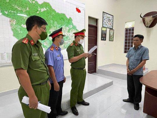 Trạm trưởng kiểm lâm nhận 35 triệu đồng để cho lâm tặc phá rừng - Ảnh 2.