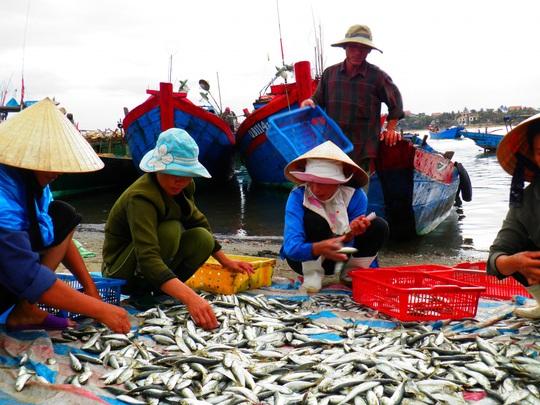 Quảng Bình góp 27,5 tấn tôm cá cùng công nhân TP HCM chống dịch - Ảnh 5.