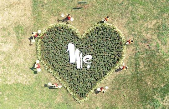 Chương trình truyền hình Mẹ là Tình Yêu tôn vinh tình Mẹ - Ảnh 7.
