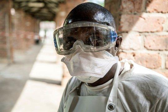 WHO cảnh báo thêm một loại virus lây từ dơi sang người, đã có ca tử vong - Ảnh 1.