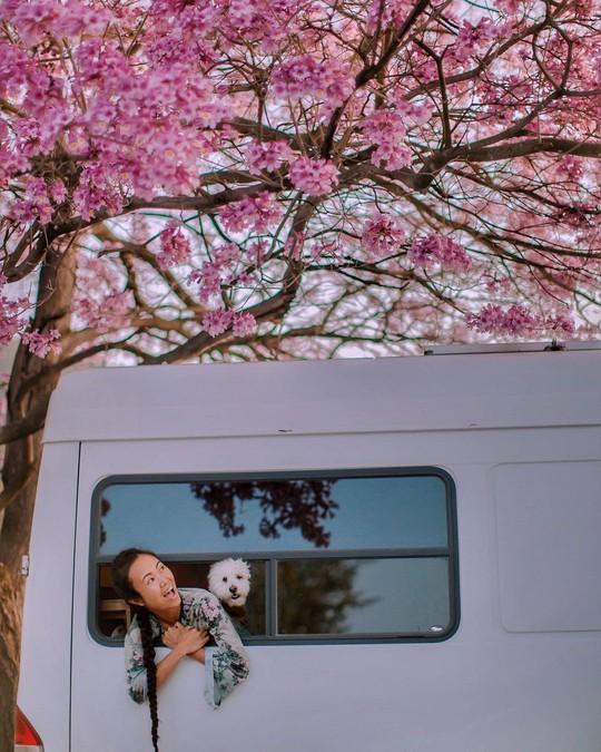Vợ chồng Việt làm nhà di động đi khắp nước Mỹ - Ảnh 19.