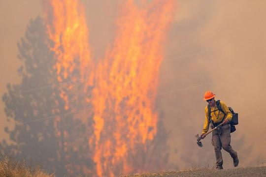 Mưa như trút nước ở Nhật, sấm sét, cháy rừng ở Mỹ - Ảnh 3.
