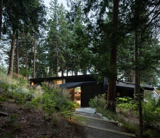 Ngắm nhìn cabin tuyệt đẹp nằm gần rừng Vancouver - Ảnh 1.