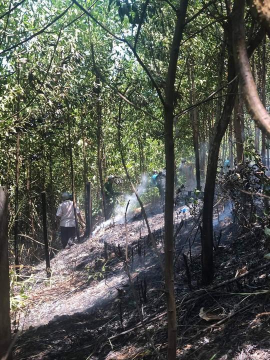 Quảng Nam: Xe tải bốc cháy dữ dội, cháy lan ra rừng keo của người dân - Ảnh 6.