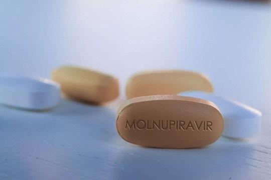 Thêm 50.000 liều Molnupiravir điều trị F0 tại nhà sắp về TP HCM - Ảnh 1.