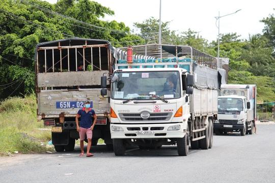 Cần Thơ kiến nghị Thủ tướng giữ nguyên biện pháp chống dịch trong vận chuyển hàng hoá - Ảnh 14.