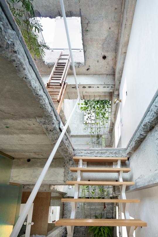 Căn nhà dành riêng cầu thang cho cây xanh - Ảnh 2.