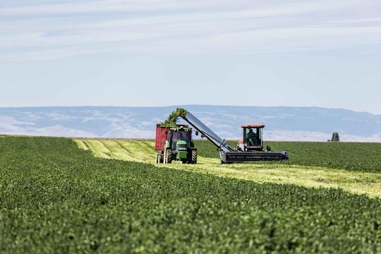 Nông trại hữu cơ làm nên sản phẩm Amway chất lượng - Ảnh 1.
