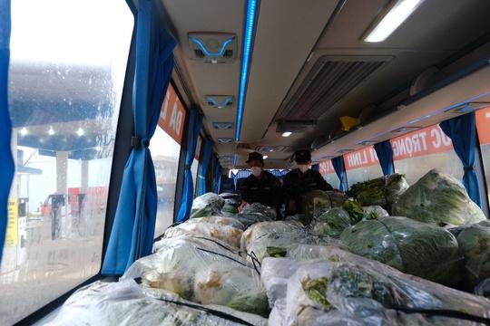 6.000 tấn rau sạch từ Lâm Đồng chuyển tặng TP HCM - Ảnh 4.